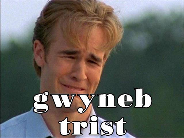 gwyneb trist copy